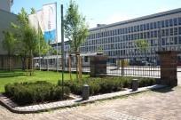 Kassel, Ständeplatz - Bepflanzung